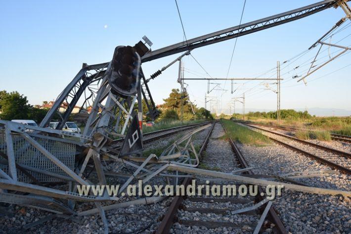 alexandriamou_treno_adentro2143