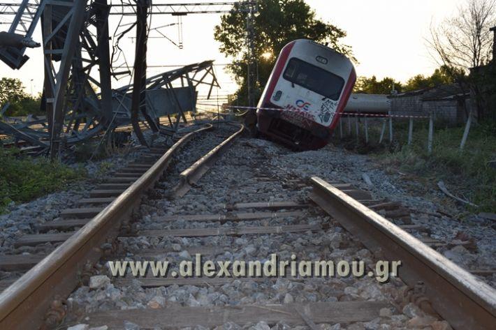 alexandriamou_treno_adentro2148