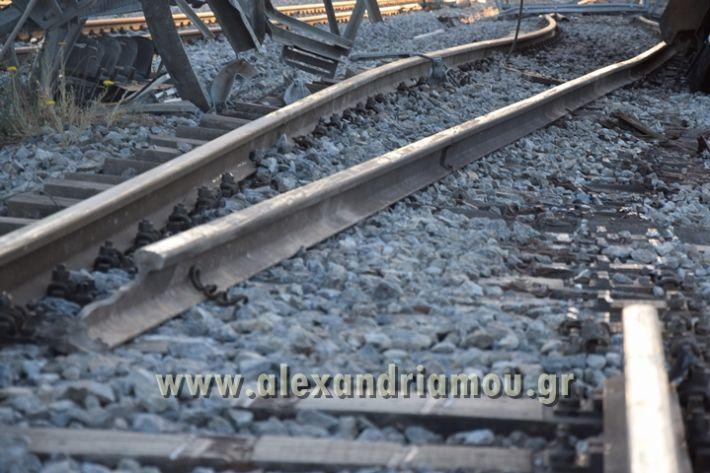 alexandriamou_treno_adentro2152