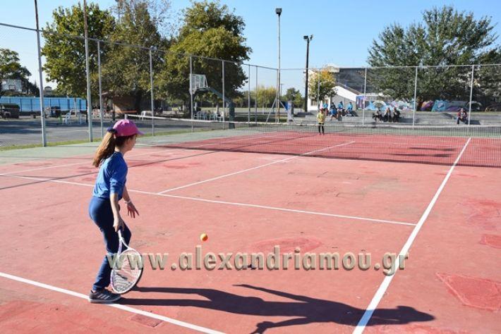 alexandriamou.gr_zefiros15001