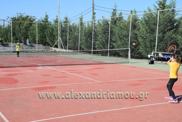 alexandriamou.gr_zefiros15011