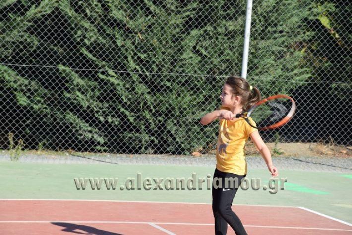 alexandriamou.gr_zefiros15016