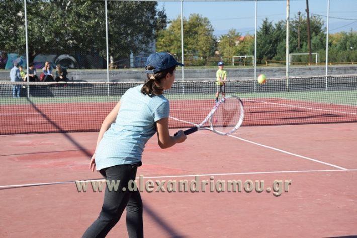 alexandriamou.gr_zefiros15034