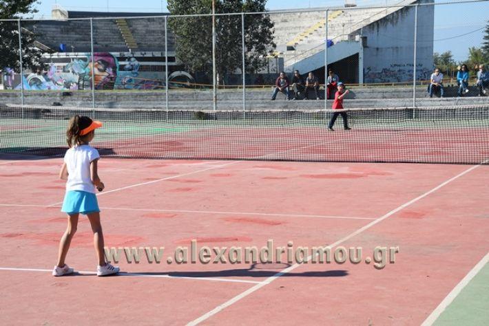 alexandriamou.gr_zefiros15040