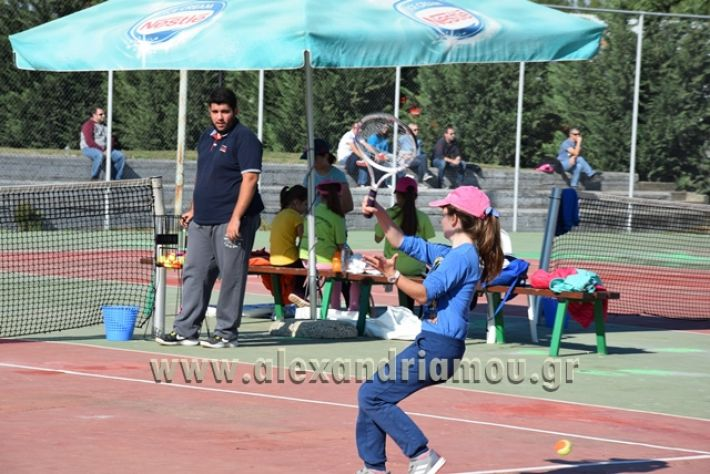 alexandriamou.gr_zefiros15051