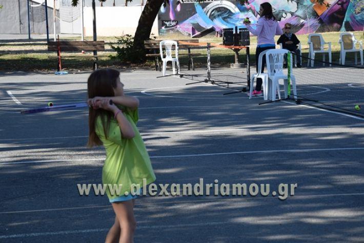 alexandriamou.gr_zefiros15058
