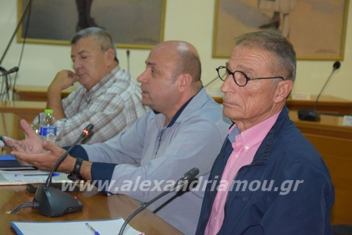 alexandriamou.gr_aesynekeush19048