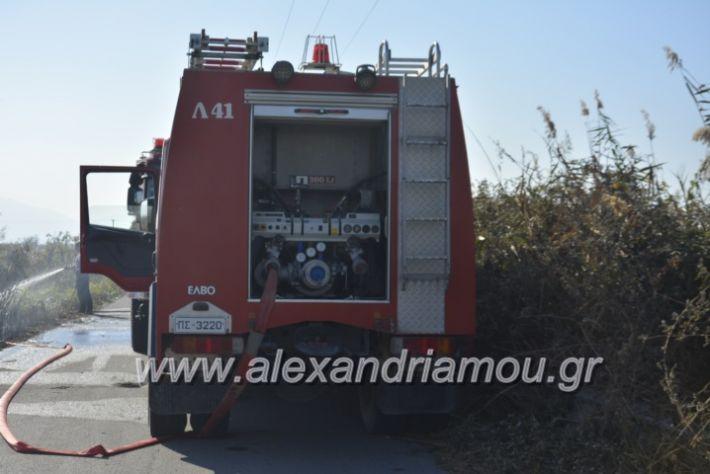alexandriamou.gr_fortia6.11006