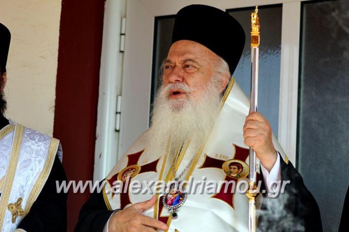alexandriamou.gr_agiasmosnisi2019IMG_7567