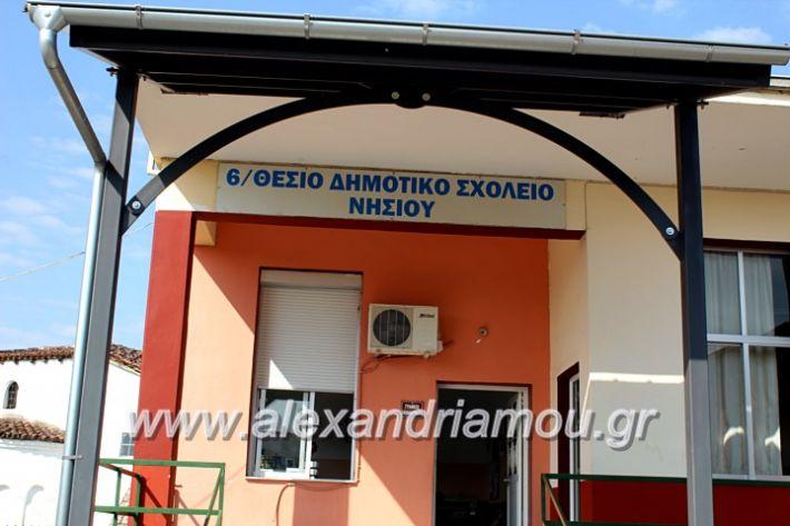 alexandriamou.gr_agiasmosnisi2019IMG_7602