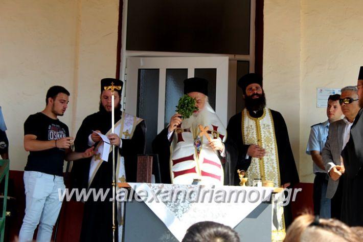 alexandriamou.gr_agiasmosnisi2019IMG_7638