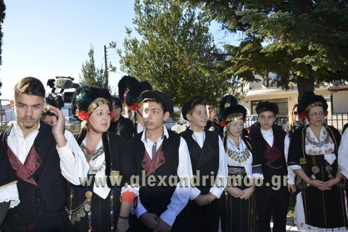 meliki_ag.nikolaos2017152
