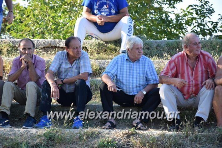 alexandriamou.gr_agkathia_xariesa007