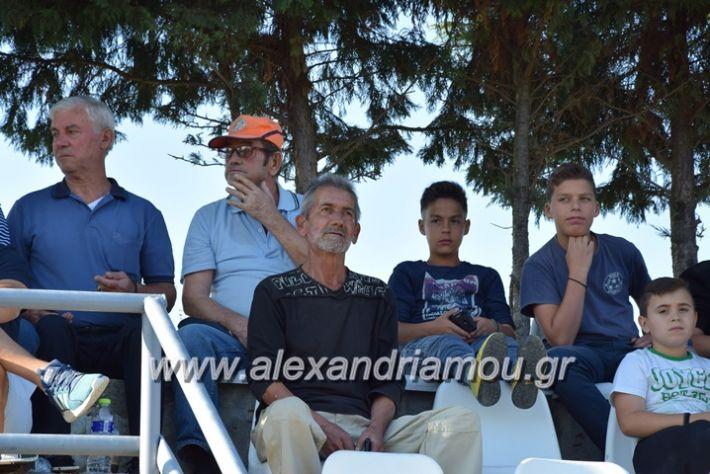 alexandriamou.gr_agkathia_xariesa043