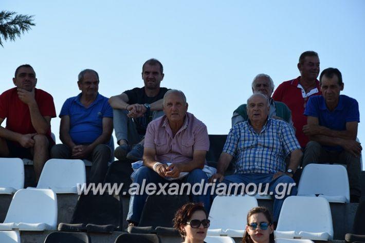 alexandriamou.gr_agkathia_xariesa059