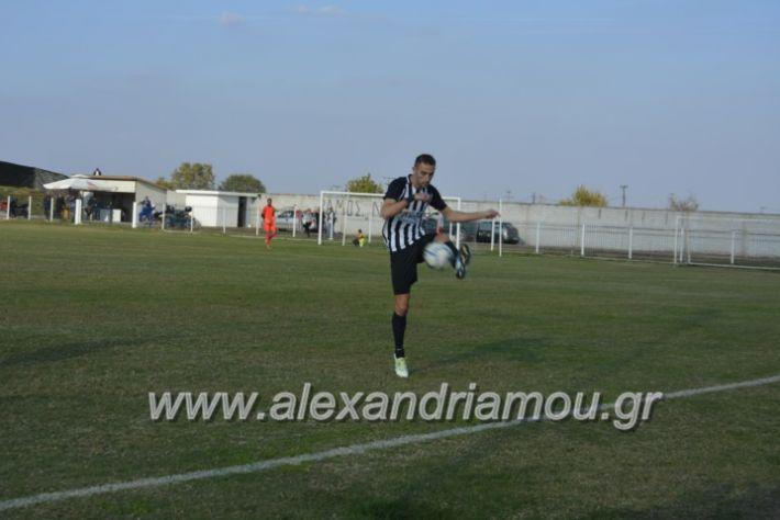 alexandriamou.gr_agkathiaaridaia11.11067