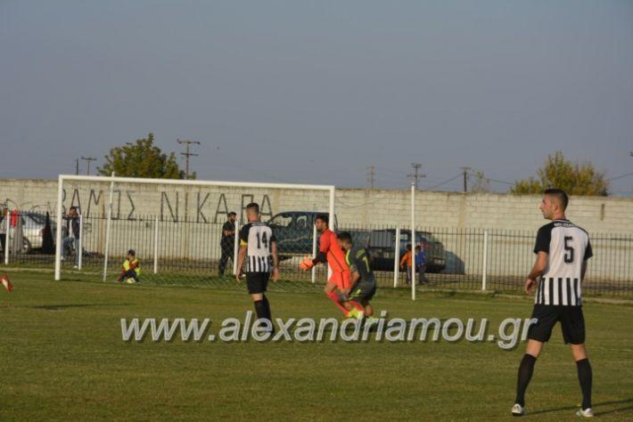 alexandriamou.gr_agkathiaaridaia11.11173