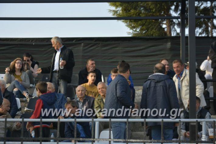 alexandriamou.gr_agkathiaaridaia11.11197