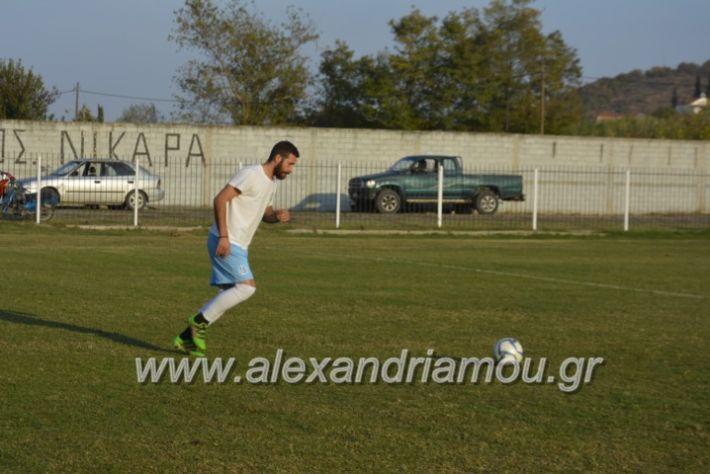 alexandriamou.gr_agkathiaaridaia11.11201