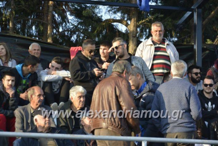 alexandriamou.gr_agkathiaaridaia11.11212