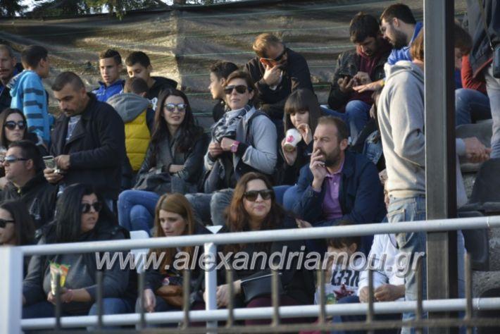 alexandriamou.gr_agkathiaaridaia11.11219