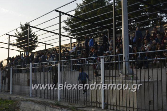 alexandriamou.gr_agkathiaaridaia11.11225