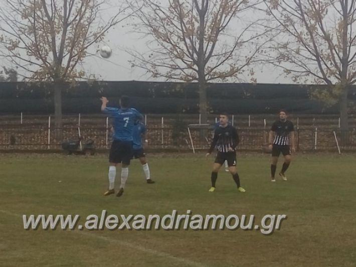 alexandriamou.gr_agkathiameliti25.11059