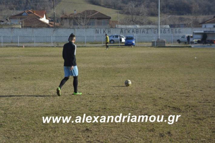 alexandriamou.agkathiatriglia2019138