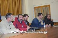 alexandriamou_sulogos_agroton0001