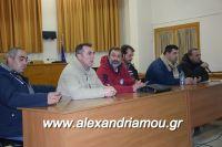 alexandriamou_sulogos_agroton0003