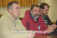alexandriamou_sulogos_agroton0004