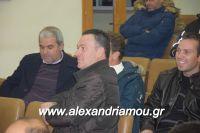 alexandriamou_sulogos_agroton0009