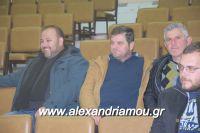 alexandriamou_sulogos_agroton0011