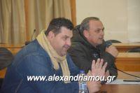 alexandriamou_sulogos_agroton0013