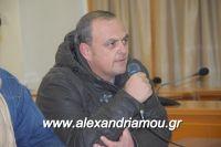 alexandriamou_sulogos_agroton0014
