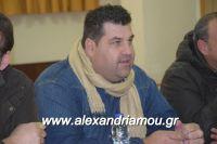 alexandriamou_sulogos_agroton0015