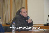 alexandriamou_sulogos_agroton0017