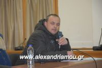 alexandriamou_sulogos_agroton0018