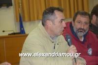 alexandriamou_sulogos_agroton0020