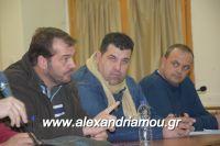 alexandriamou_sulogos_agroton0023