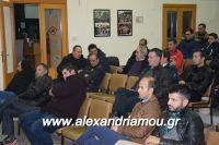alexandriamou_sulogos_agroton0025