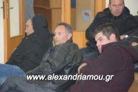 alexandriamou_sulogos_agroton0026