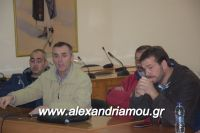 alexandriamou_sulogos_agroton0028