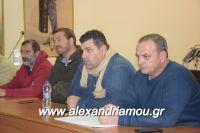alexandriamou_sulogos_agroton0031