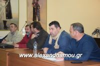 alexandriamou_sulogos_agroton0032
