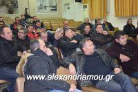 alexandriamou_sulogos_agroton0033