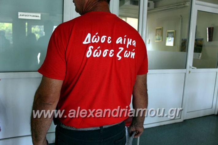 alexandriamou.gr_aimoosia10.6.2020IMG_0567