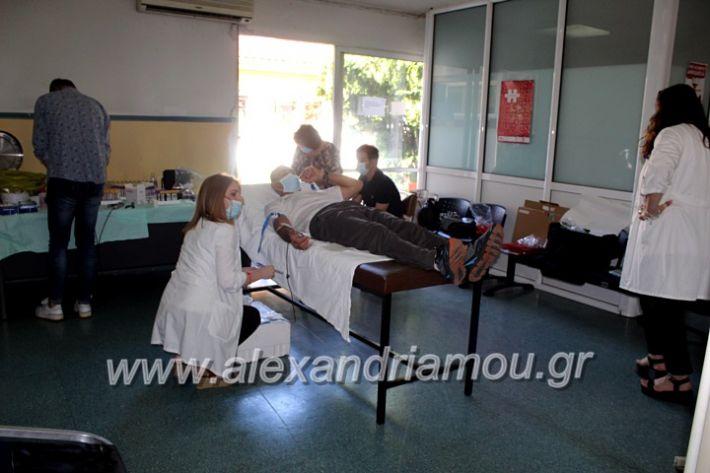 alexandriamou.gr_aimoosia10.6.2020IMG_0571