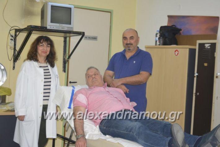 alexandriamou_aimodosia17.4.2019003