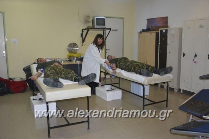 alexandriamou.gr_aimodosia5.12001